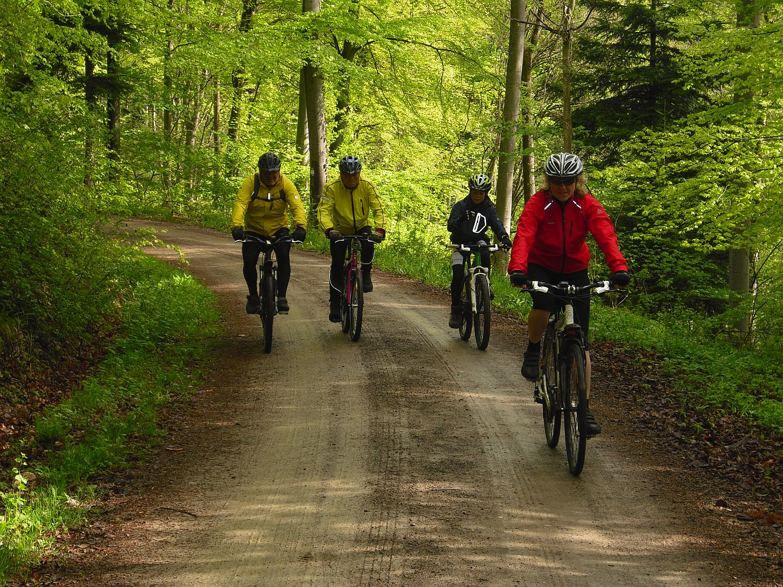 Mountainbike-Tour_02
